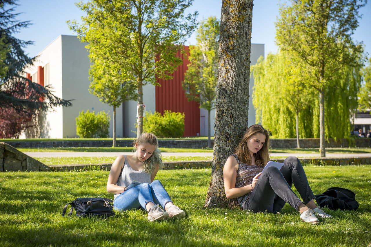 Étudier et grandir ensemble
